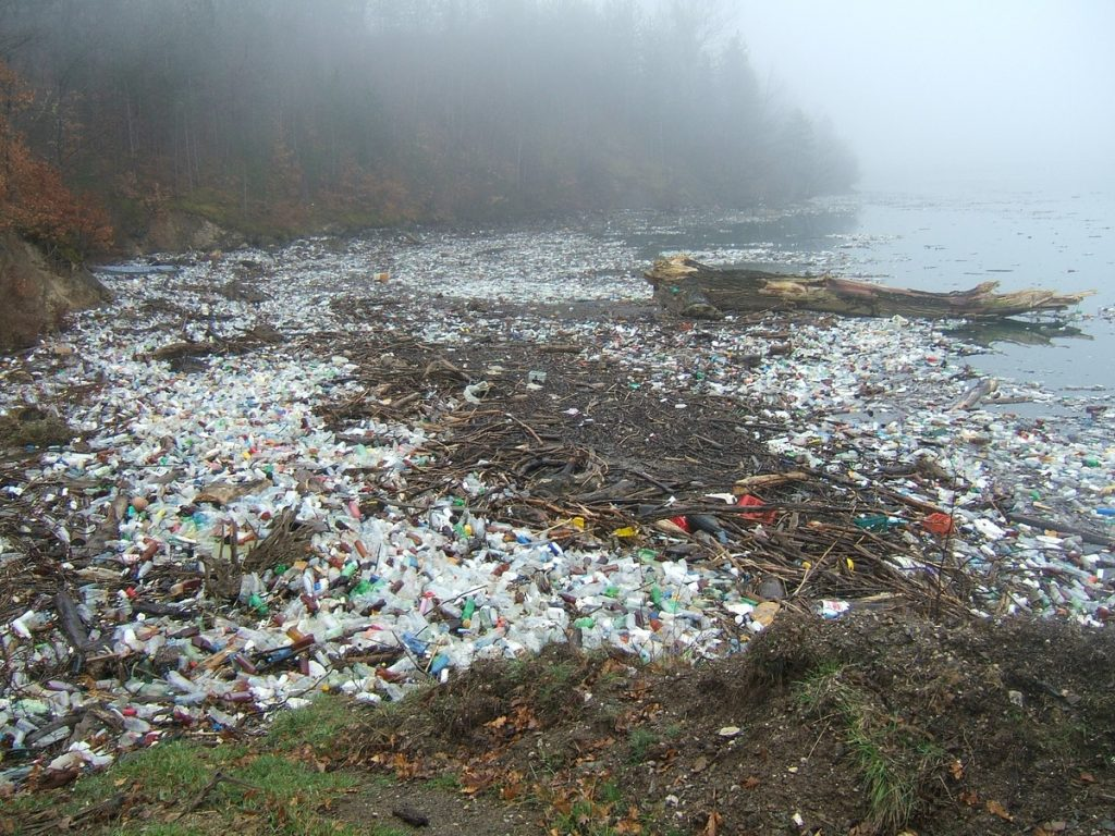 Single use plastic is not the answer for 8bn people to live more sustainably